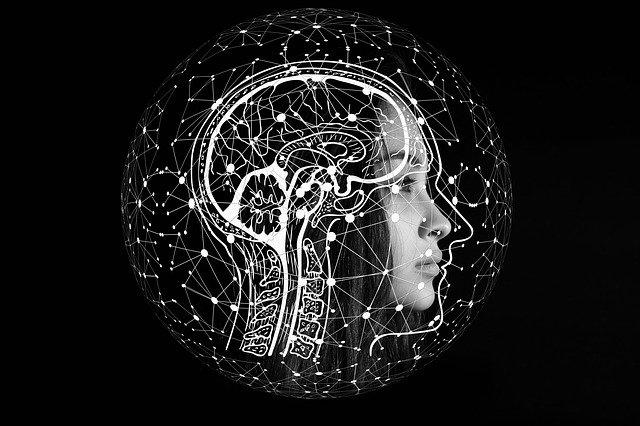 Ejercicio Físico Cerebro